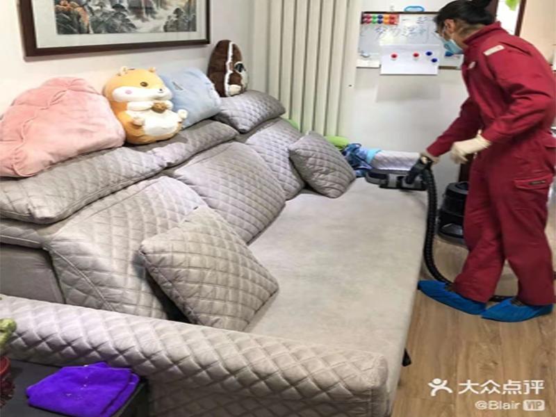 北京除螨虫案公司例客户